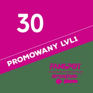 30-promo-lvl1